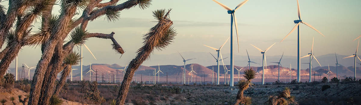 California Defies Trump's Agenda The state remains a strong market for wind  energy as its value rises.  But challenges persist.